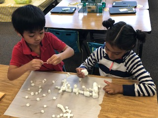Engineers at work-First grade students working cooperatively in pairs to create the tallest structure that stands by itself.